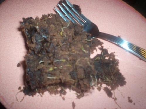 broccoli-brownie